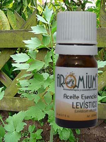aceite esencial levístico