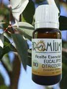 propiedades eucalipto citriodora