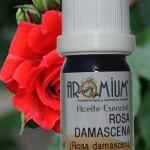 El extraordinario aceite esencial de Rosa Damascena