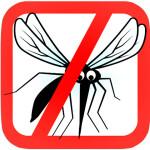 Repelente mosquitos – Como hacerte un repelente de insectos de forma natural