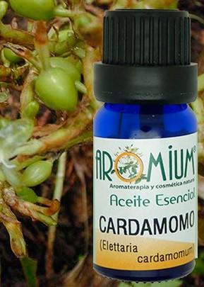 Aceite esencial Cardamomo