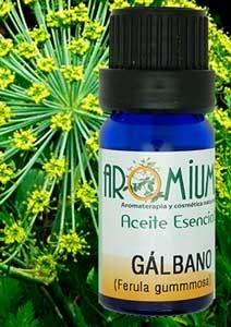 Aceite esencial Gálbano
