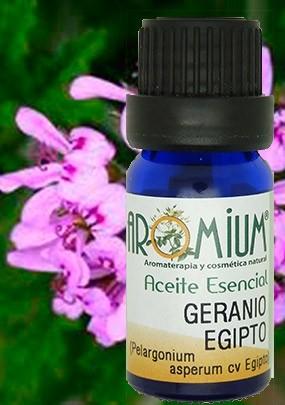 Aceite esencial geranio egipto