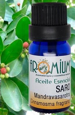 Aceite esencial Mandravasarotra (Saro)