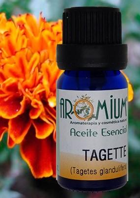 Aceite esencial tagette / Clavo de moro