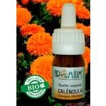 Aceite vegetal Caléndula (Bio)