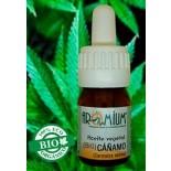 Aceite vegetal Cáñamo (Bio)