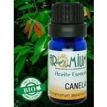 Aceite esencial Canela (Bio)