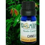 Aceite esencial Canela hojas