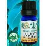 Aceite esencial Eucalipto globulus (Bio)