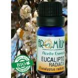 Aceite esencial Eucalipto radiata (Bio)