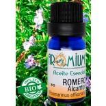 Aceite esencial Romero Alcanfor (Bio)