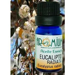 Aceite esencial Eucalipto radiata