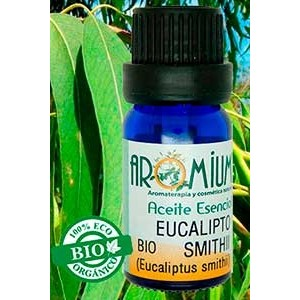 Aceite esencial eucalipto Smithii (Bio)
