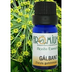 Aceite esencial de Galbano