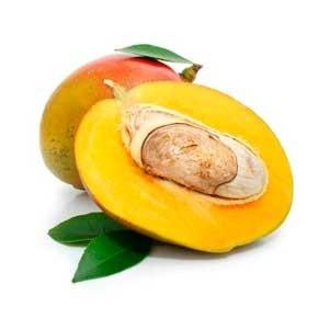 Comprar Manteca de mango